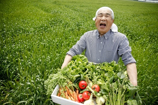 Why Should Seniors Choose a Plant-Based Diet in Des Moines, IA