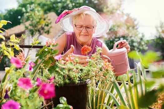 Enjoyable Daily Activities for Seniors in Des Moines, IA