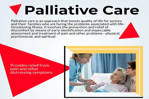 Palliative Care [Infographic]