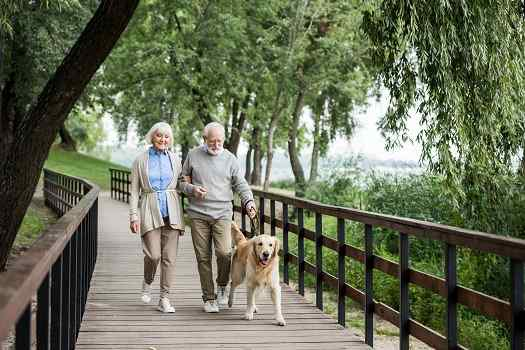 Tips for Aging Adults